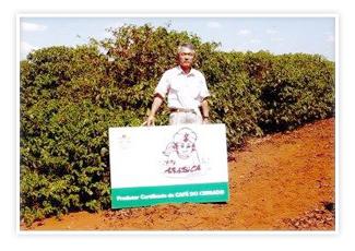 ブラジルセラード パライーゾ農園